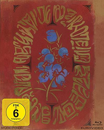 Mary und die Blume der Hexen [Blu-ray] Limited Edition für 21,40€ [Amazon Prime]