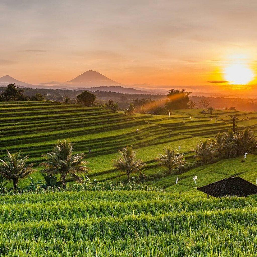 Bali, Indonesien: 7 Nächte - 5* Samsara Ubud - Poolvilla mit Frühstück, Butler-Service, Transfer / bis Dezember 2022 / gratis Storno