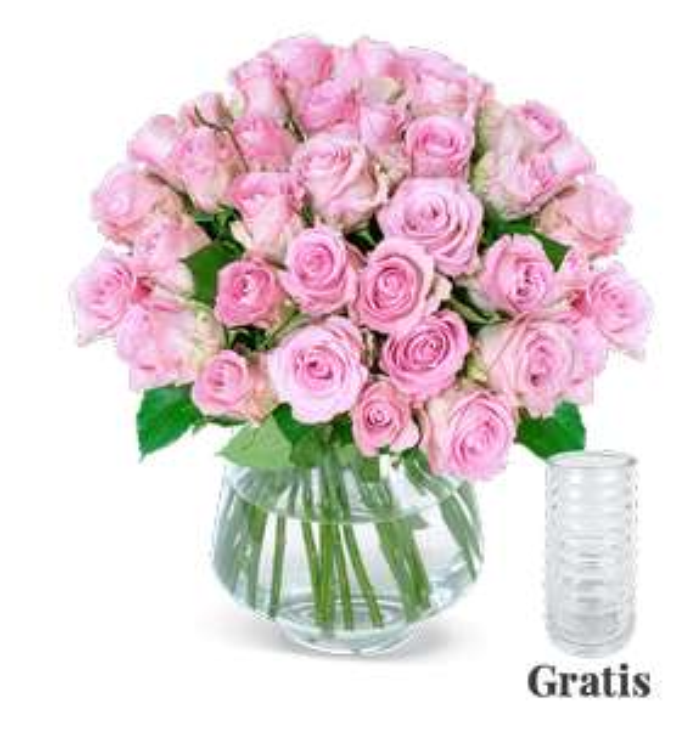 27 pinke Black Friday Rosen inkl. GRATIS Vase und Versand