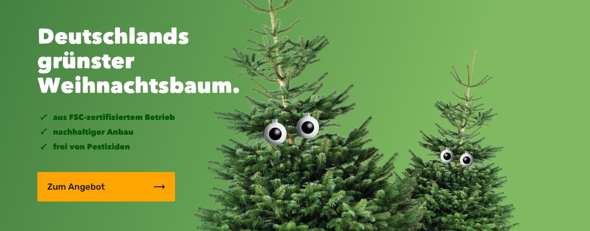 Weihnachtsbaum bestellen und Gutschein in Höhe des Kaufpreises erhalten