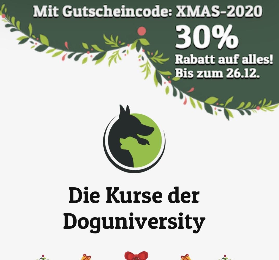 Doguniversity ( Online Hundetraining)
