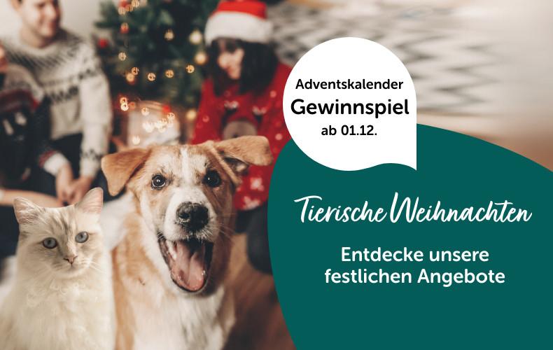 Zooroyal - End of the Year Sale | Bis zu 75% Rabatt