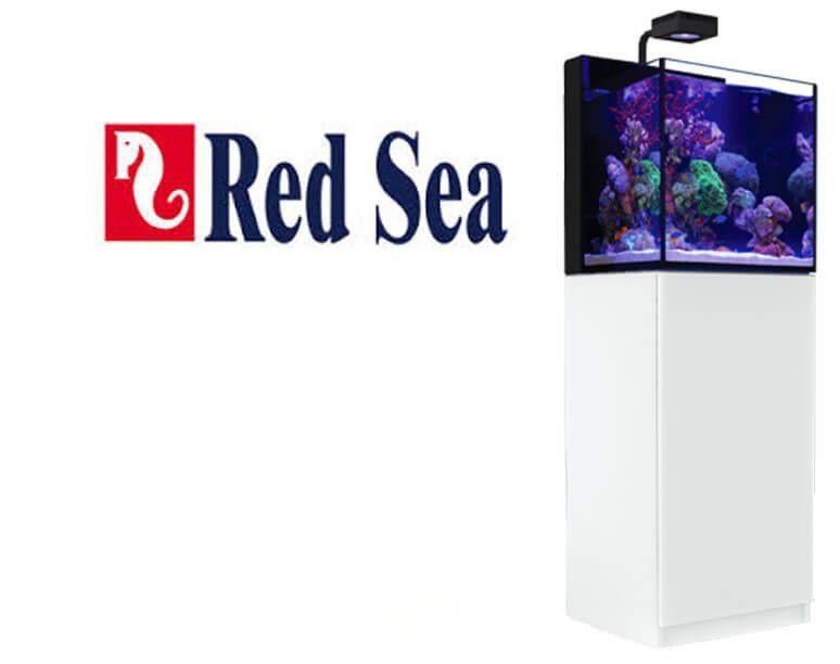 20% auf alle RED SEA Aquarien, z.B. Red Sea MAX NANO Komplettset mit Unterschrank weiß, Kölle Zoo