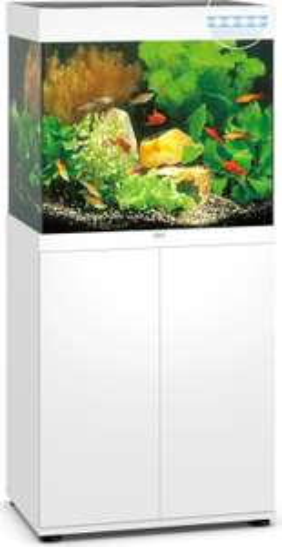 JUWEL Lido 120 LED Aquarienkombination versch. Farben, Kölle Zoo