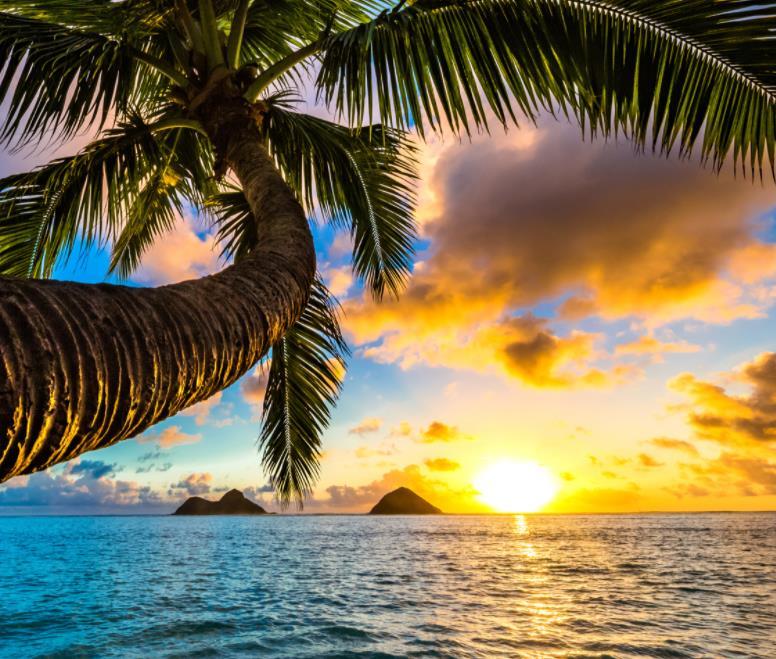 Flüge: Hawaii (bis Nov 21) Hin- und Rückflug mit United Airlines von Amsterdam für 437€ inkl. Gepäck