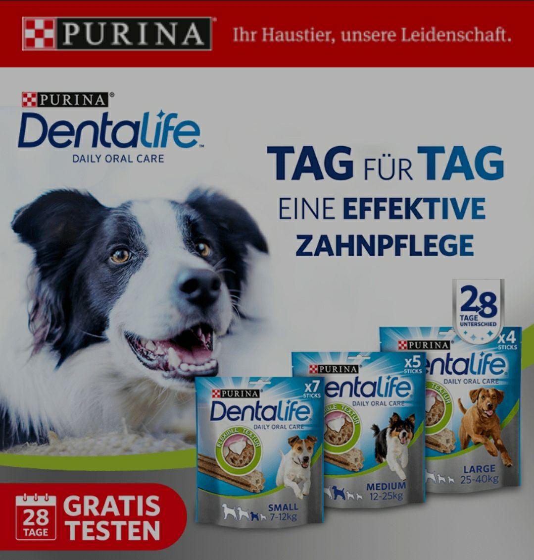 [GzG] Purina Dentalife Gratis Testen