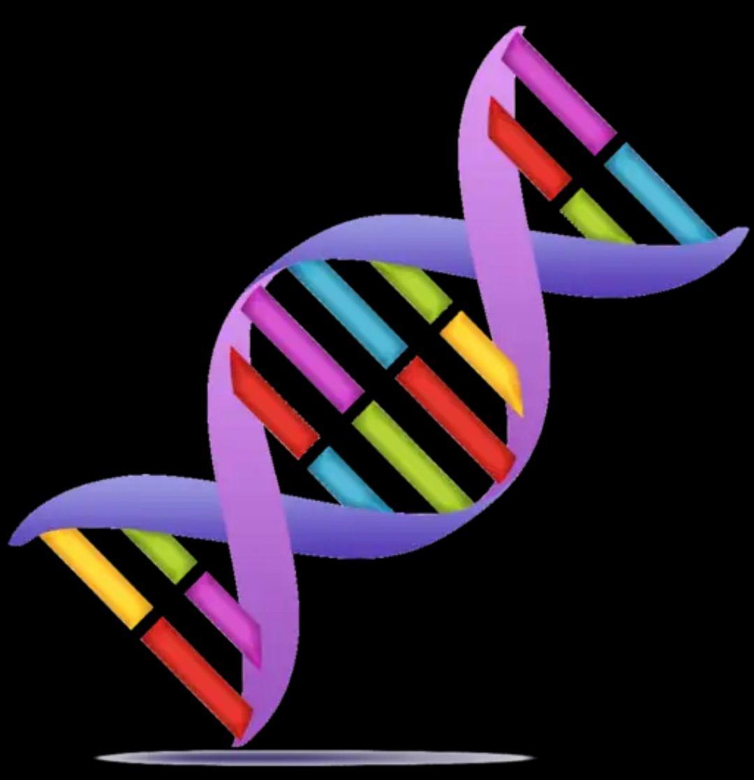 Genetic Helper - Biologie-App zur Transkription von DNS & RNA (4,2* >10.000 Downloads) [Android-Freebie]
