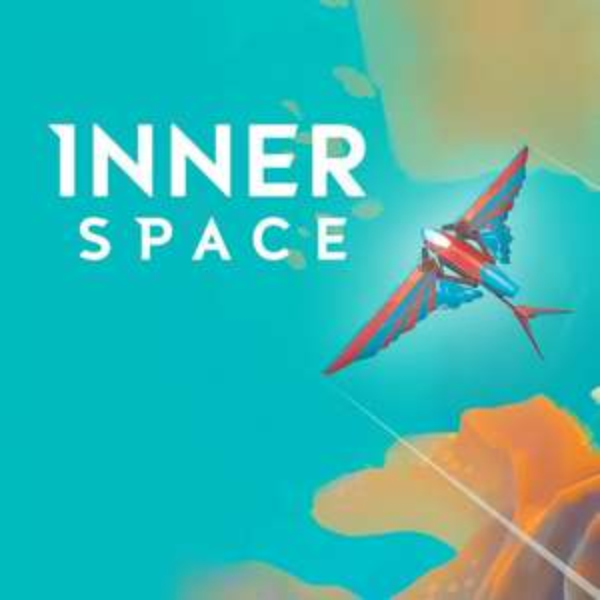 InnerSpace im Nintendo Switch eShop für nur 2,73€ (ZAF) bzw. 3,99€ (DE)