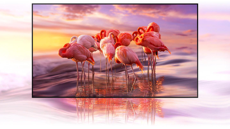 Samsung TV GQ65Q60TGUXZG 65QLED Q60T