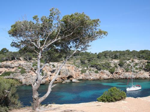 6 Tage Mallorca, 4*-Apartment + Frühstück, Flug, Mietwagen für 2 Personen 178,50€ p.P.