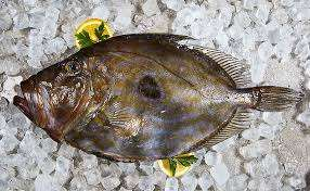 Regional: Petersfischfilet 800gr