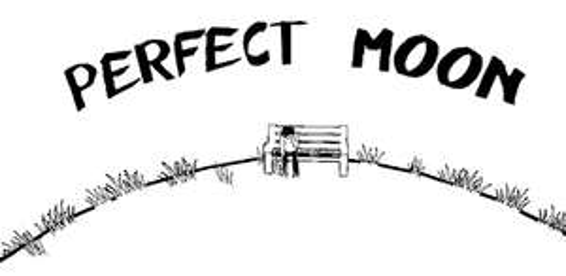 [Google Playstore] Perfect Moon