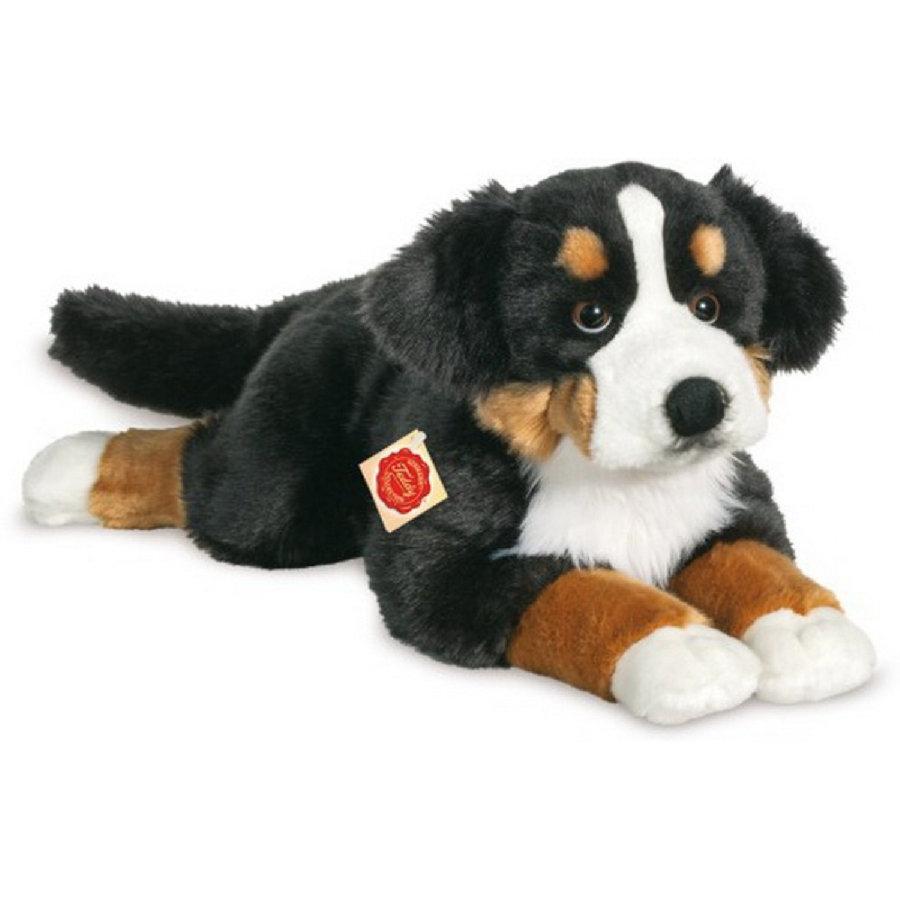 Teddy Hermann, Berner Sennenhund, 60 cm, Kuscheltier, Stofftier, Plüschtier