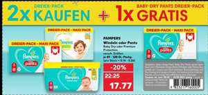 [Kaufland] 2x 3er-Pack Pampers Baby-Dry oder Premium Protection Windeln/Pants kaufen 1x 3er-Pack Baby-Dry Pants gratis
