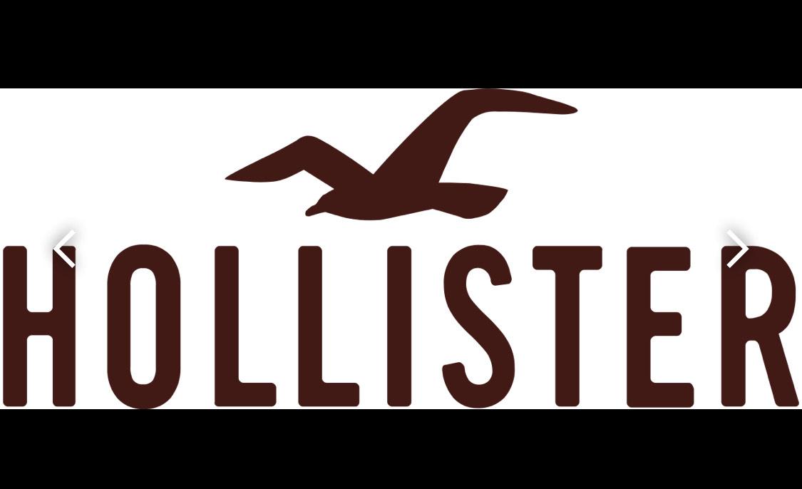 Hollister sale 20%
