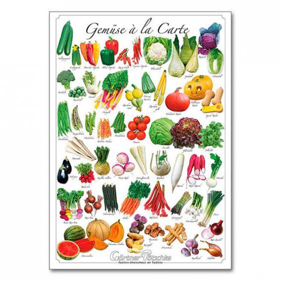 Gärtner Pöttschke Onlineshop: Hochwertiges DIN A 2 Gemüseposter für dekorative Zwecke in Haus oder Gartenhütte , beschriftet