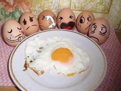 Die große Bergzeit Eiersuche15% Rabatt