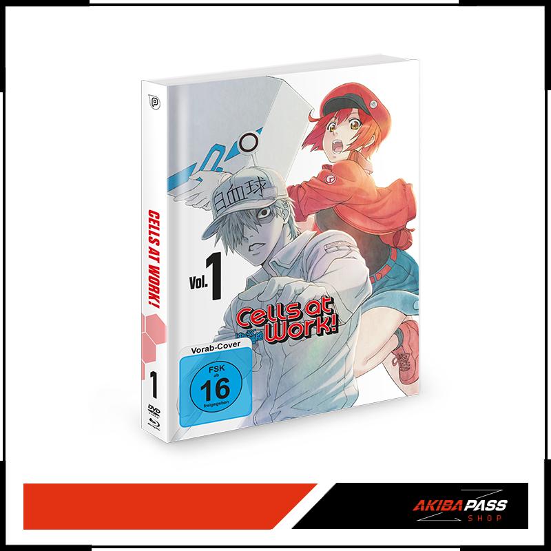 Anime: Cells at Work! Vol.1 bis Vol.3 - 35% Rabatt