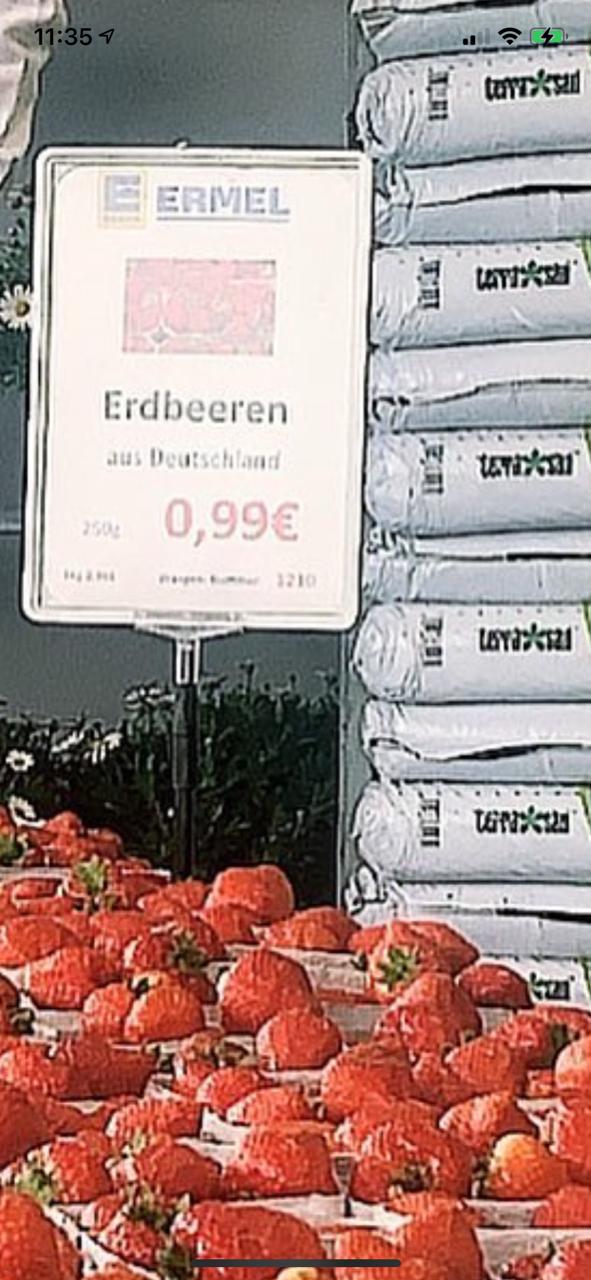 [Lokal Rodgau] Deutsche Erdbeeren 250g für 1€ statt 2,50€
