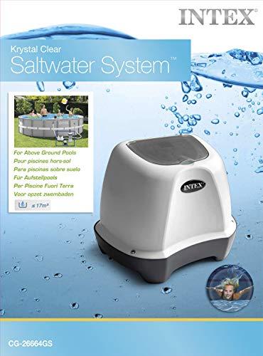 Intex Salzwassersystem Chlorinator Pool Desinfektion @amazon.it