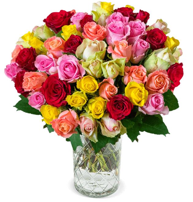 Blumenstrauß: 35 bunte Rosen mit 50cm Länge | 7 Tage Frischegarantie mit Lieferung