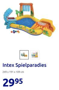 Intex Spieleparadies (Click and Collect)