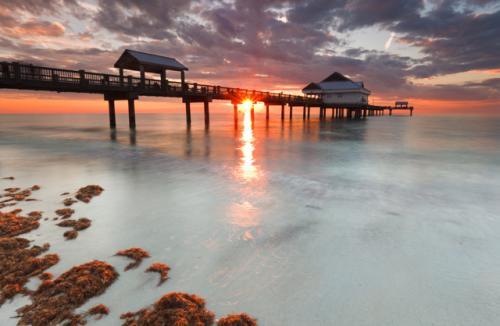 Hin- und Rückflug nach Tampa (Florida) für nur 366 Euro (April bis Juni)