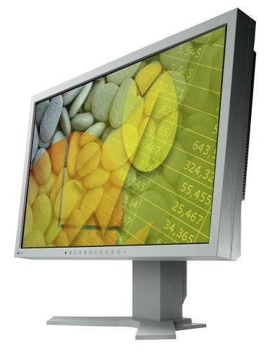 [Amazon WHD]  EIZO S2202WH-GY 55.9 cm (22 Zoll) widescreen TFT Monitor (DVI,VGA, Kontrastverhältnis 1000:1, Reaktionszeit 5ms)  2 Stück wie neu !