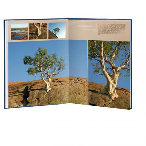10€ Rabatt auf CEWE-Fotobücher! - Individuelle 10€ Gutscheine für CEWE, gültig bis 30.04.