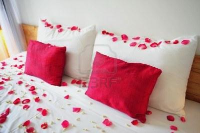 (CK) 1000 Kunst - Rosenblätter für 2,90€ @ Ebay