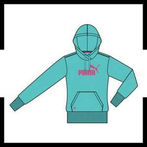 Puma Kapuzensweatshirt ESS in grün oder pink