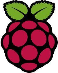 Raspberry Pi Model B bei getgoods