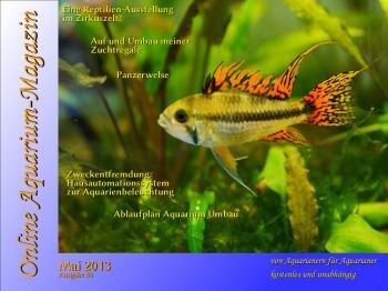 gratis Online Aquarium-Magazin - monatlich zum downloaden