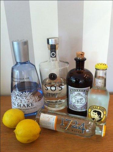 Hochwertige Gins Ersparnis bis 25% gegenüber Idealo + 9% Qipu bei Galeria Kaufhof Online (Monkey 47, Haymans etc.)