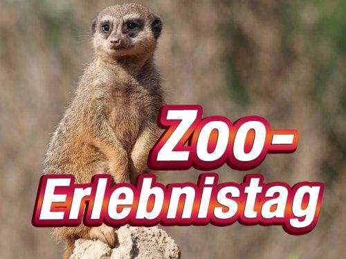 Leipziger Zoo - Erlebnistag - 15.07.2013