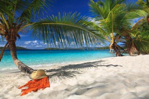 Karibik für 499,98 Euro (Barbados und Tobago)