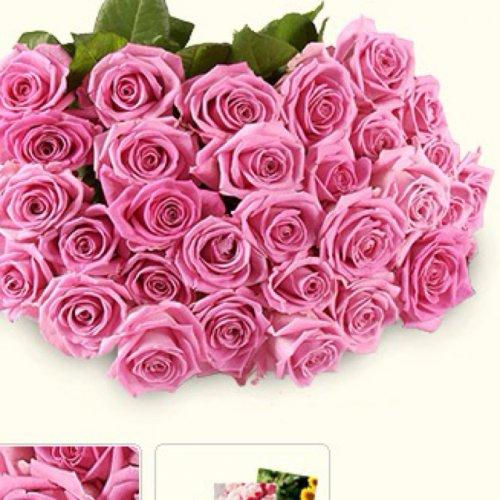 30 pinke Rosen von Tchibo inkl. Grußkarte für 20,91 € mit Versand