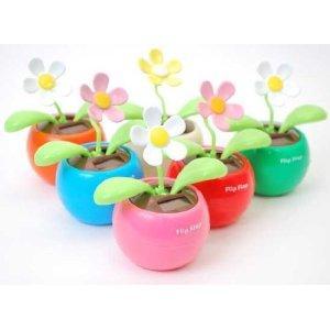 Schreibtischgadget: Gute-Laune-Blume! (flip-flap)