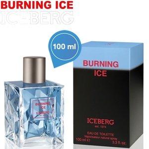 Iceberg Burning Ice EDT Spray für Männer - 100ml
