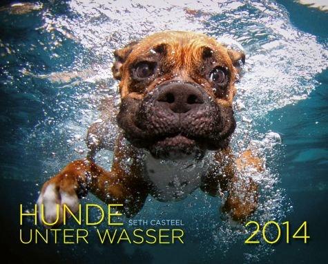 Hunde unter Wasser 2014 für 7,99€ statt 9,99€