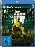[Cede.de] [BluRay] Breaking Bad Staffel 5.1