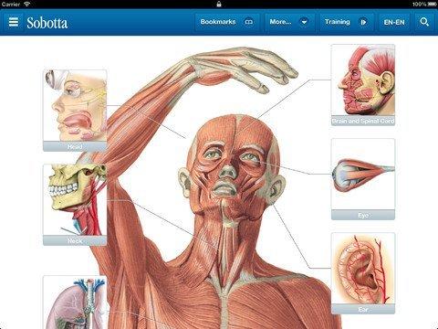 Sobotta Anatomie [iOS App] NOCHMAL! 29,99€ statt 69,99€ nur heute (2.12.) (Facebook benötigt)