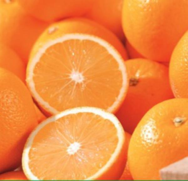 Orangen Kaufland Fellbach