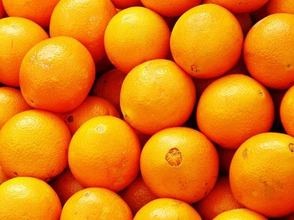 Orangen 3kg 1,49€ Preisfehler Netto Marken-Discount
