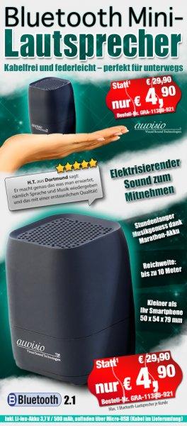 auvisio Portabler Bluetooth-Aktiv-Lautsprecher MSS-100.bt