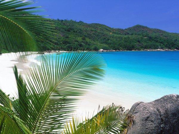 Flugkracher für Kurzentschlossene - Karibik Flug für € 300 Hin- & Rückflug