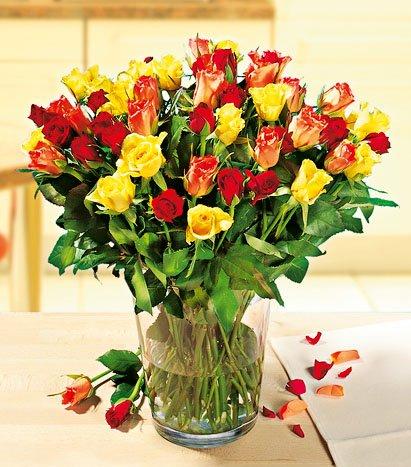 Rosenstrauß in versch.Farben (13 Rosen pro Bund) für 1,99€ bei KAUFLAND