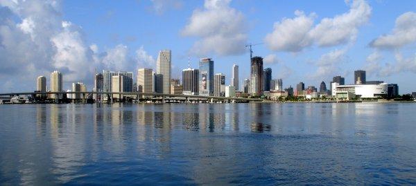 Flüge: Miami ab Düsseldorf 263,- € hin und zurück - Los Angeles 423,- € hin und zurück (März - Mai)
