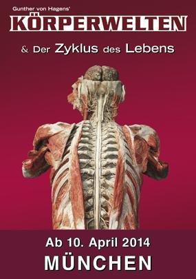 """""""KÖRPERWELTEN & Der Zyklus des Lebens""""  von Gunter von Hagens in München"""