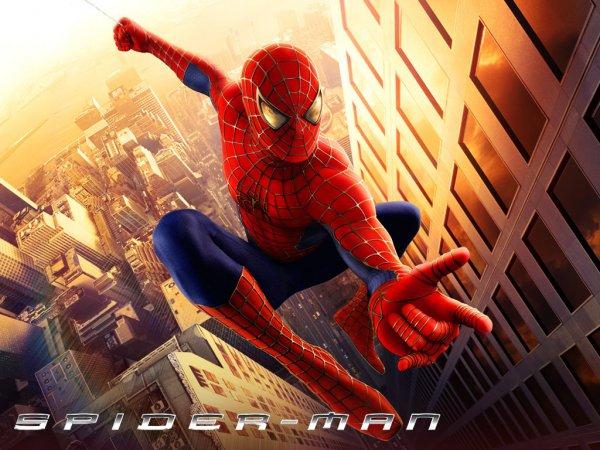 The Amazing Spider-Man und  Spider-Man Trilogie DVD Box Lidl